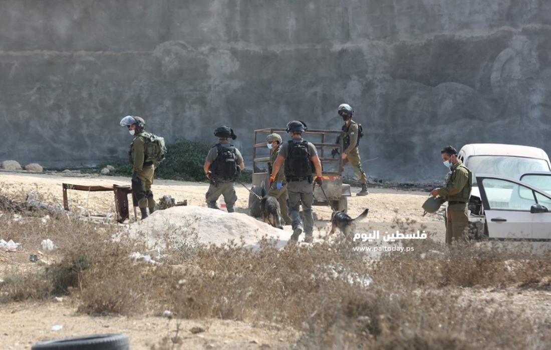 مستوطنون يسرقون سياجًا من داخل أراضي فلسطينية جنوب نابلس