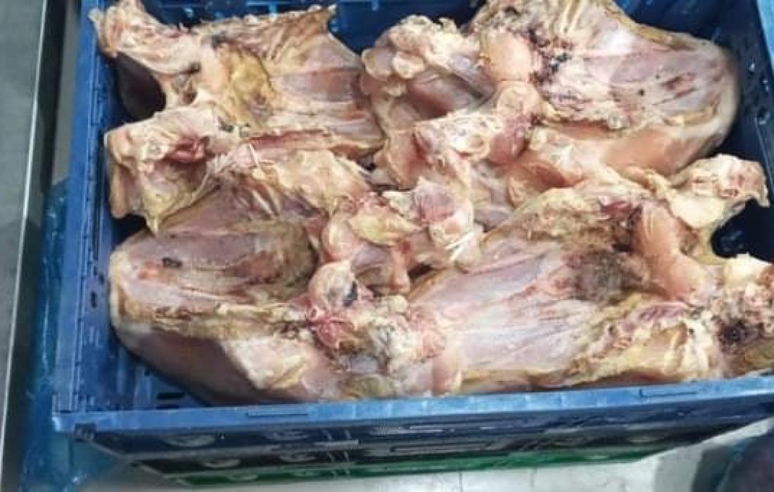 دجاج فاسد