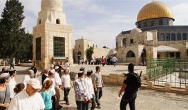 مستوطنون يقتحمون المسجد الاقصى.jpg
