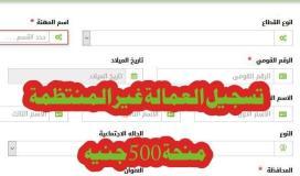 الاستعلام عن منحة 500 جنية للقوي العاملة الغير منتظمة في مصر .. رابط جديد