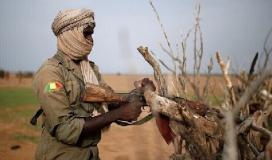 الجيش المالي - مالي